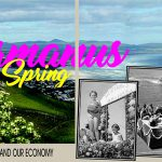 Hermanus in Spring: Wild Flowers, Whales Tourism and Our Economy